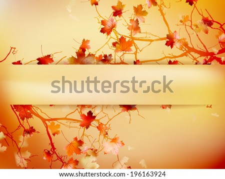 Autumn background with leaves Back to school.  EPS 10 vector - stock vector