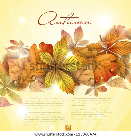 Autumn background with leaves.  Vector illustration. Eps 10. - stock vector