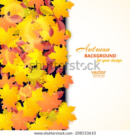 Autumn background with maple and other leaves and field for text. Vector illustration. - stock vector