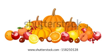 Autumn fruits and vegetables. Vector illustration. - stock vector