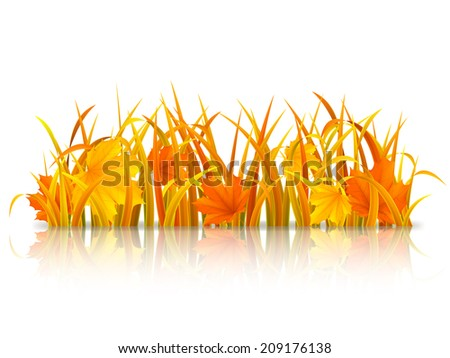 Autumn grass and fallen maple leaves. - stock vector