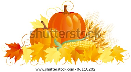 Autumn Harvest. Vector group of vegetables isolated on white background.