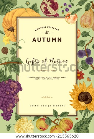 Autumn harvest. Vector vintage card. Frame with flowers, fruits, nuts and pumpkin. - stock vector