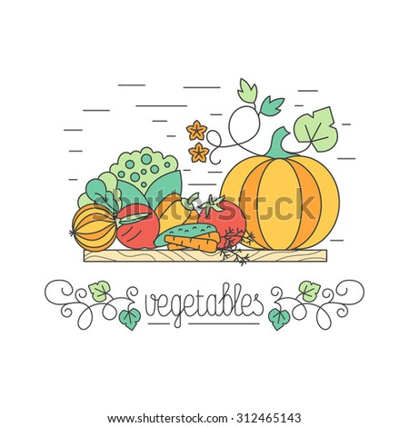 Autumn harvest vegetables concept, each one is isolated for easy use. Healthy lifestyle or diet design element.