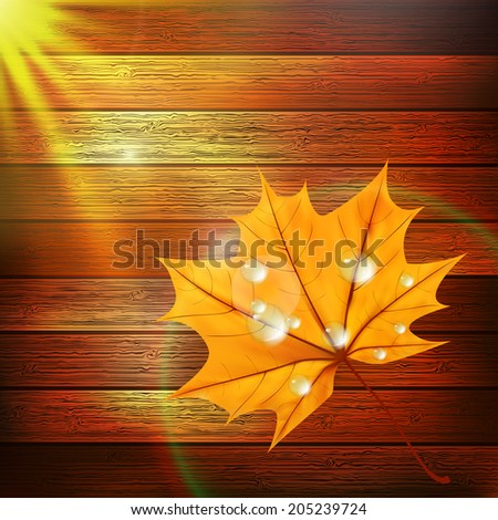 Autumn Leaf template with water droplets on wood. plus EPS10 vector file - stock vector