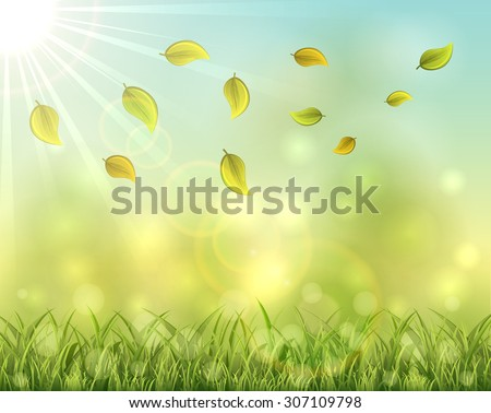 Autumn leaves and grass on sky background, illustration. - stock vector