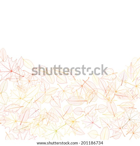Autumn leaves on white background. plus EPS10 vector file - stock vector