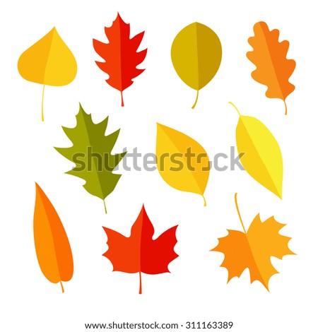 autumn leaves set isolated on white stock vector 311163389 rh shutterstock com fall leaves cartoon pictures fall leaf cartoon pictures