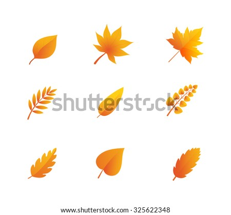 Autumn leaves vector set - stock vector