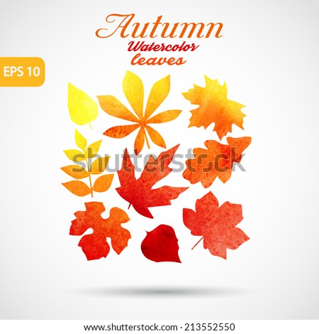 autumn leaves watercolor - stock vector