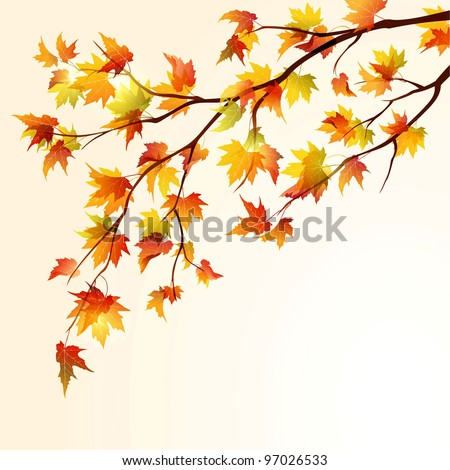 Autumn maple tree branch on bright background. EPS 10