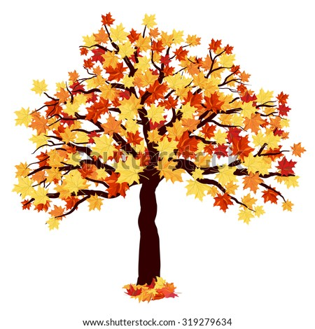 Autumn Maple Tree With Falling Leaves on White Background. Elegant Design with Ideal Balanced Colors. Vector Illustration. - stock vector