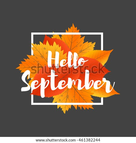 Autumn new season Hello September. Lettering with hand drawn letters. Label and banner template with yellow red leaves.