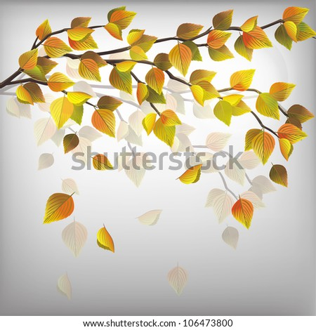Autumn tree with flying leaves, beautiful nature background, vector illustration. Place for text - stock vector