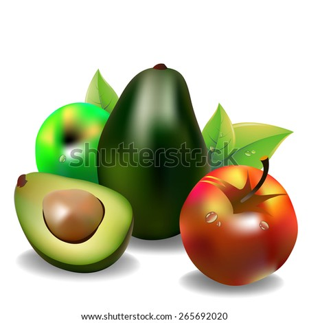 avocado fruit green vector food apples leaves - stock vector