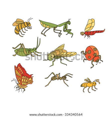 Awesome vector set of funny Insects in cartoon style: bee, mantis, dragonfly, grasshopper, fly, ladybird, butterfly, ant, wasp. - stock vector