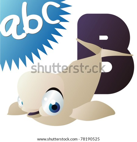 B is for Beluga - stock vector