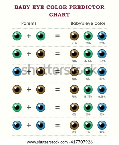 Baby Eye Color Predictor Chart Template Stock Vector 417707926