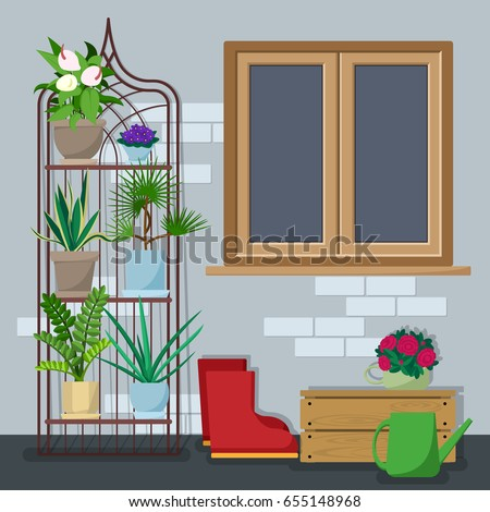 Back Yard With Various Indoor Plants On The Shelves And Stands With  Gardening Equipment. Great