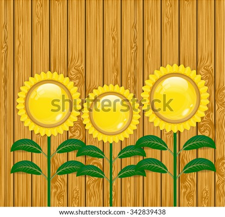 Backdrop with three yellow, glossy sunflowers with green leaves on wooden background - stock vector
