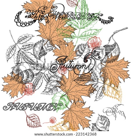 Background drawing with autumn leaves and a font - stock vector