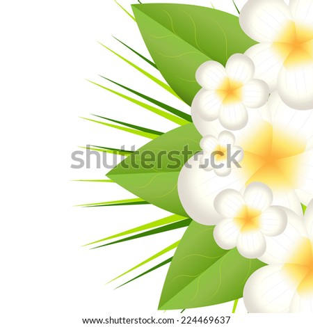 background for a design with beautiful flowers, vector illustration