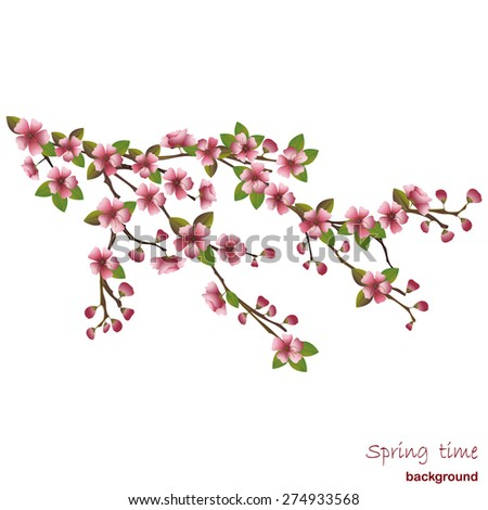 Background Japanese cherry tree - stock vector