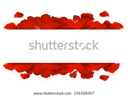 Background of red rose petals on a white background