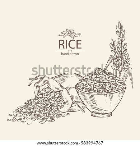 Background with bag of rice and plate with rice. hand drawn.