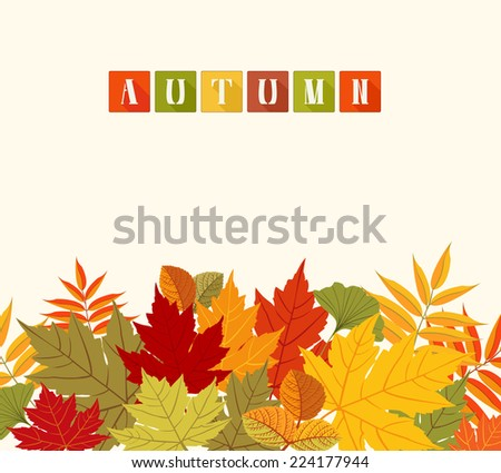 Background with colorful Autumn leaves. Abstract colorful composition with different leaves. Decorative background. Copy space. Vector file is EPS8. - stock vector
