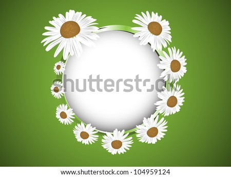 Background with daisies flowers. Clip-art - stock vector