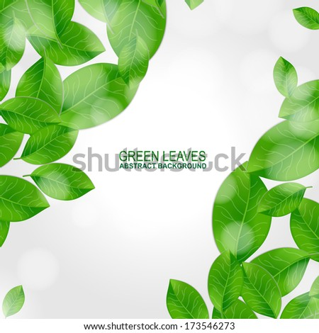 Background with fresh green leaves