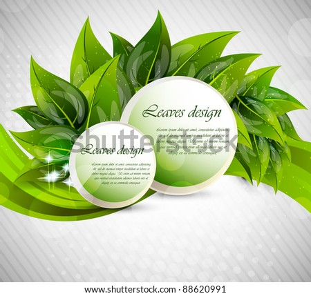 Background with leaves and circles - stock vector