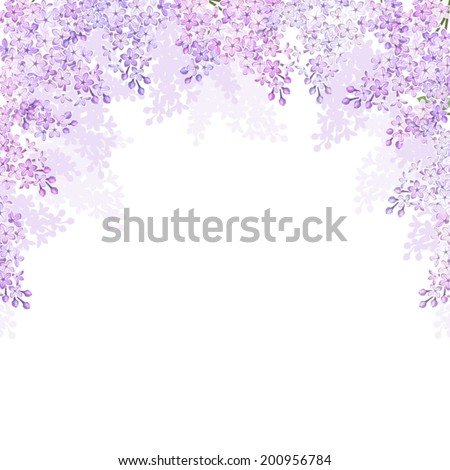 Background with lilac flowers. Vector illustration. - stock vector
