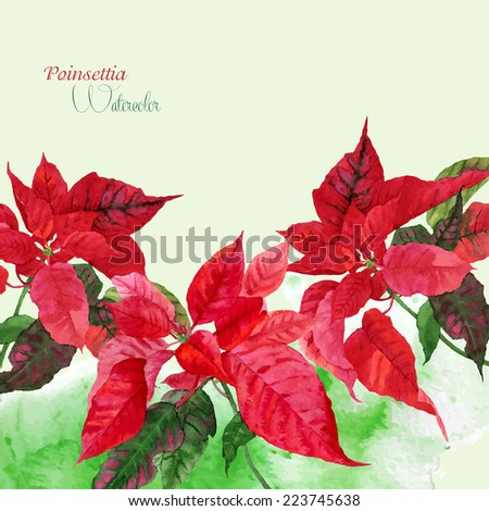 Background  with red poinsettia. Vector watercolor illustration