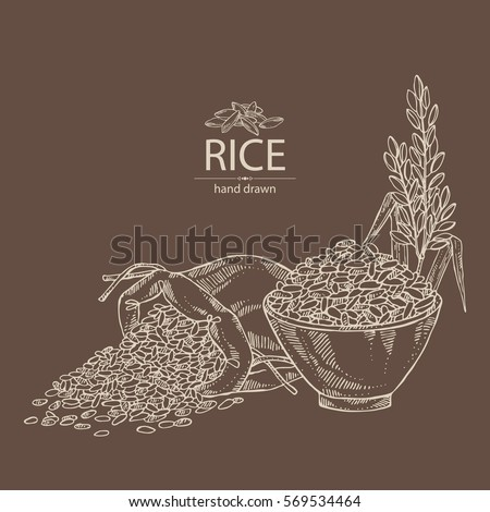 Background with rice, bag of rice and plate with rice. hand drawn