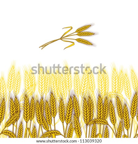 Background with ripe yellow wheat ears, vector illustration. - stock vector