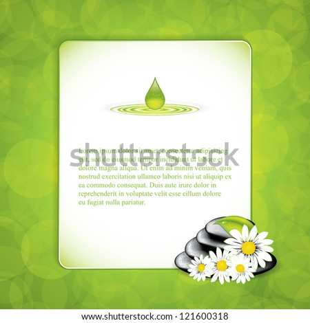 Background with spa stones and white flowers.Vector - stock vector