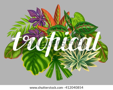 Background with stylized tropical plants and leaves. Image for advertising booklets, banners, flayers, cards, textile printing. - stock vector