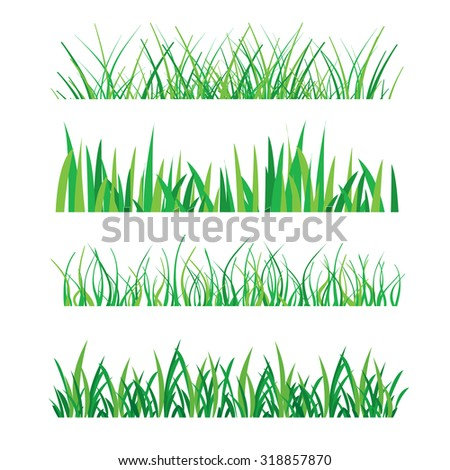Backgrounds of Green Grass Isolated On White  Vector Illustration  - stock vector