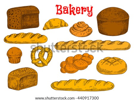 Baked bread from rye, whole wheat and white flour sketch icons with french baguettes and long loaves, croissant, cinnamon rolls and cupcake, braided bun and pretzel, topped by poppy and sesame seeds - stock vector