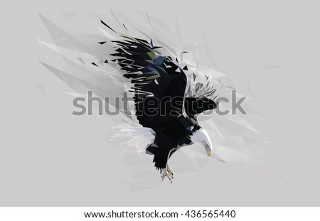 Bald Eagle Bird Polygon Art Illustration  - stock vector