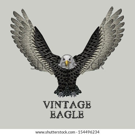 Bald Eagle Vector - stock vector