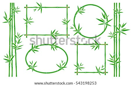 Bamboo frame collection set. Vector