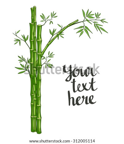 Bamboo green vector illustration - stock vector