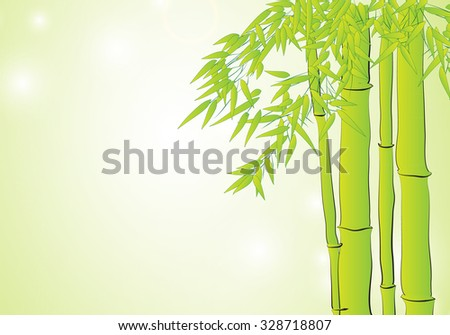 Bamboo in light green background