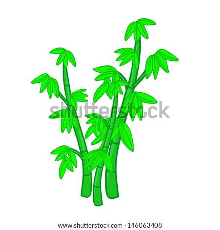 Bamboo isolated illustration on white background - stock vector