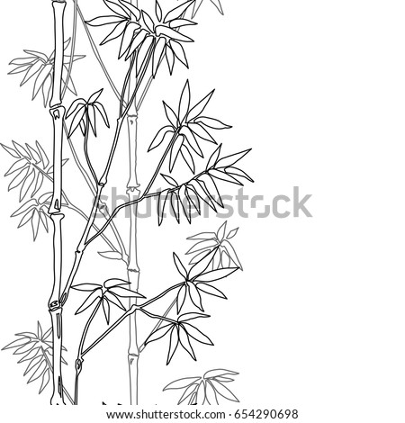 bamboo coloring pages - bamboo japanese vector asian illustration art stock vector