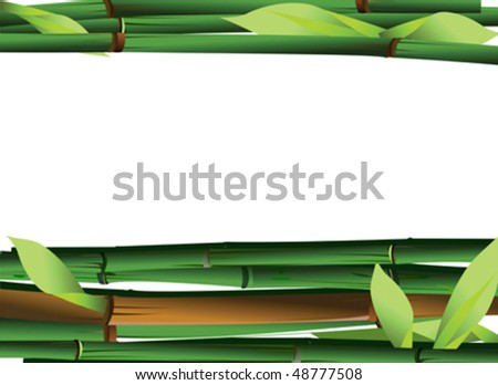 Bamboo Shoots On White Background. Vector Illustration. - stock vector