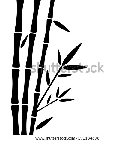 Bamboo trees with leaves black silhouettes isolated on a white background. Forest - vector - stock vector